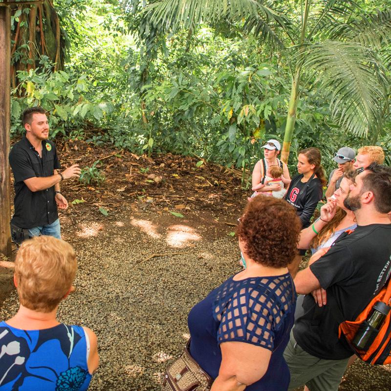 Reisen Costa Rica Newsletter Juli